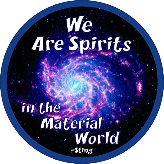 Image result for spirits in the material world