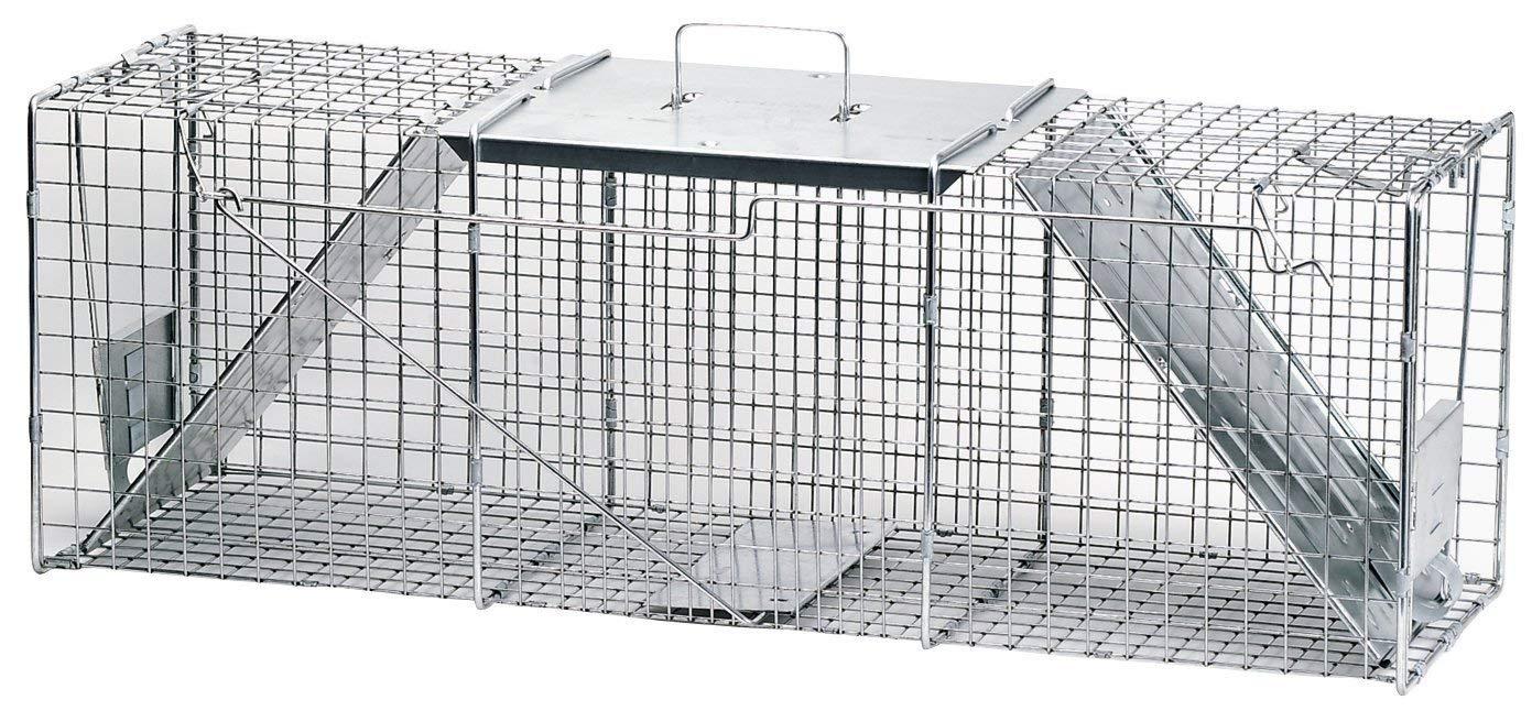 Amazon.com: Havahart 1045 Live Animal Two-Door Raccoon ...