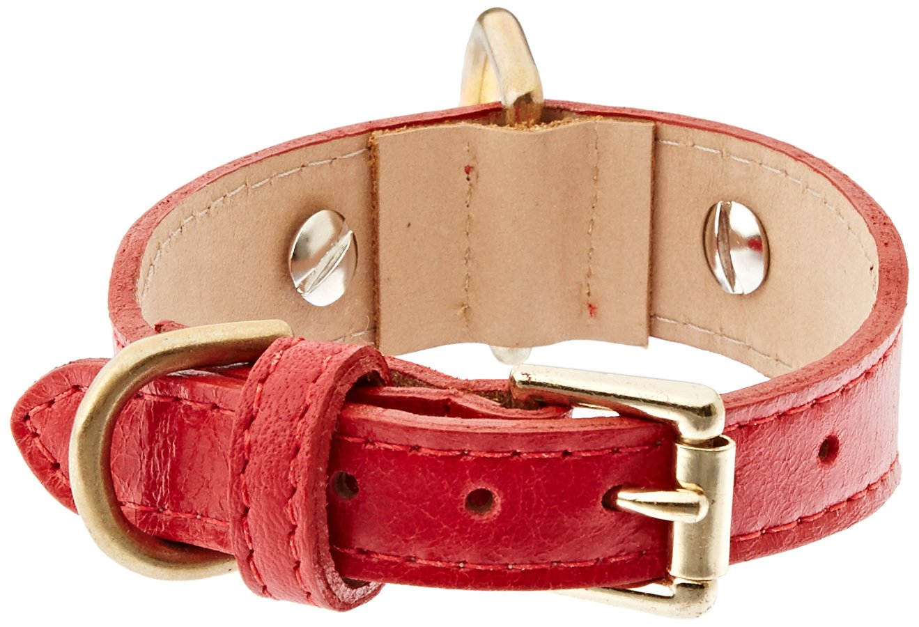 RED s RED s Crystal Owl Tapered Dog Collar, Small Size 9-11, Red