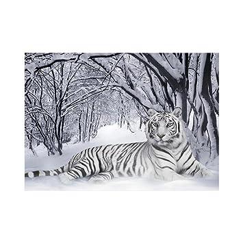 Animaux Sauvages 10015 Tigre Blanc Poster Affiche Papier Murale Pop Art Décoration Intérieure Reproduction Peinture Avec Dessin Coloré Grandeur 91
