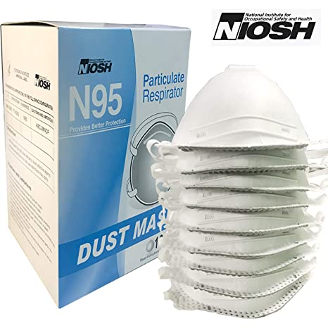 With Particulate Respirator N95 Raytex Dust Valve Disposable Mask