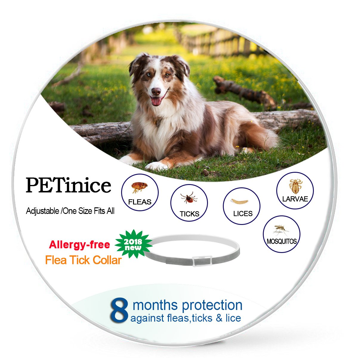Flea and Tick Prevention for Dogs,Dog Flea and Tick Control-Prevents,Repels Fleas,Ticks & Lice Waterproof and Adjustable Flea Collar for Dogs,25 Inches,Gray(New Version)