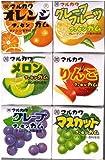 丸川製菓 フルーツ6マーブルガム 4粒×6個×15個