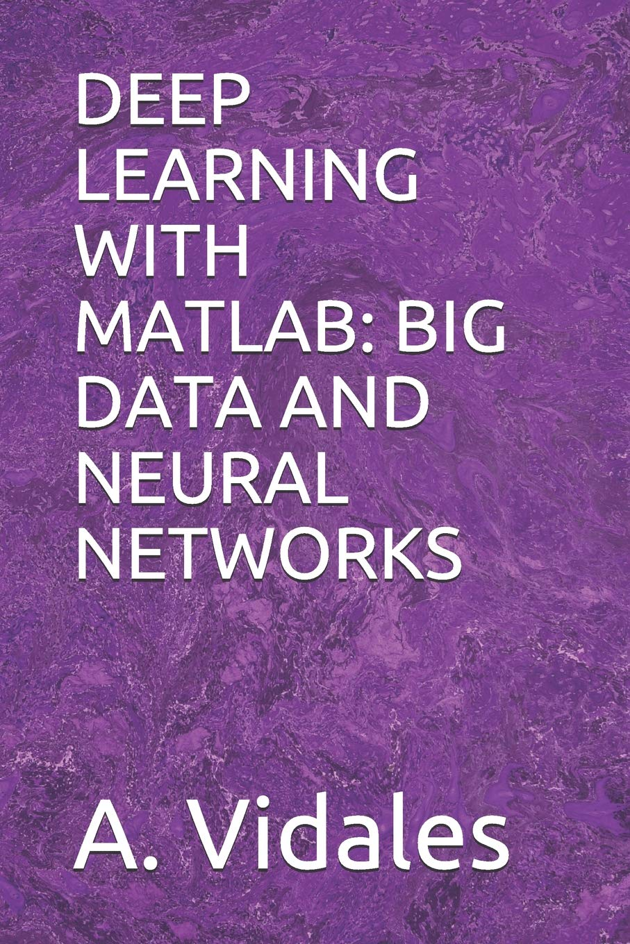 DEEP LEARNING WITH MATLAB: BIG DATA AND NEURAL NETWORKS: A  Vidales