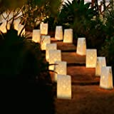 Homemory 50 PCS White Luminary Bags, Flame