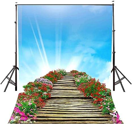 EdCott 5x7ft Poliéster Paisaje Escenario Telón de Fondo Escalera al Cielo y Flores Cielo Azul Nubes Blancas Fotografía de Fondo Foto Estudio Accesorios LYGE461: Amazon.es: Electrónica
