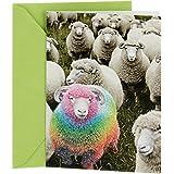 Hallmark Shoebox Funny Birthday Card (Rainbow Sheep) (0369RZF3028)