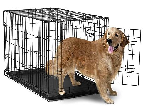 Amazon 42 Dog Crate 2 Door Wdivide Wtray Fold Metal Pet