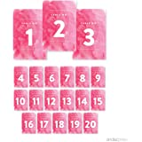 Andaz Press Pink Watercolor Wedding Collection, Table Numbers 1 - 20 on Perforated Paper, Single-Sided, 4 x 6-inch, 1 Set