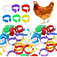 150 Pcs Bird Chicken 16mm Foot Ring Bands - Chicken Identification Leg Bands Numbered Clip Poultry Leg Bands Tags for…