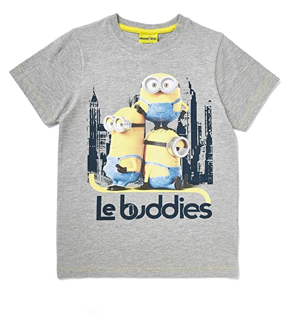c6f733c64 Official Minions Kids Boys T-Shirt Top 18-24 Months: Amazon.co.uk: Clothing