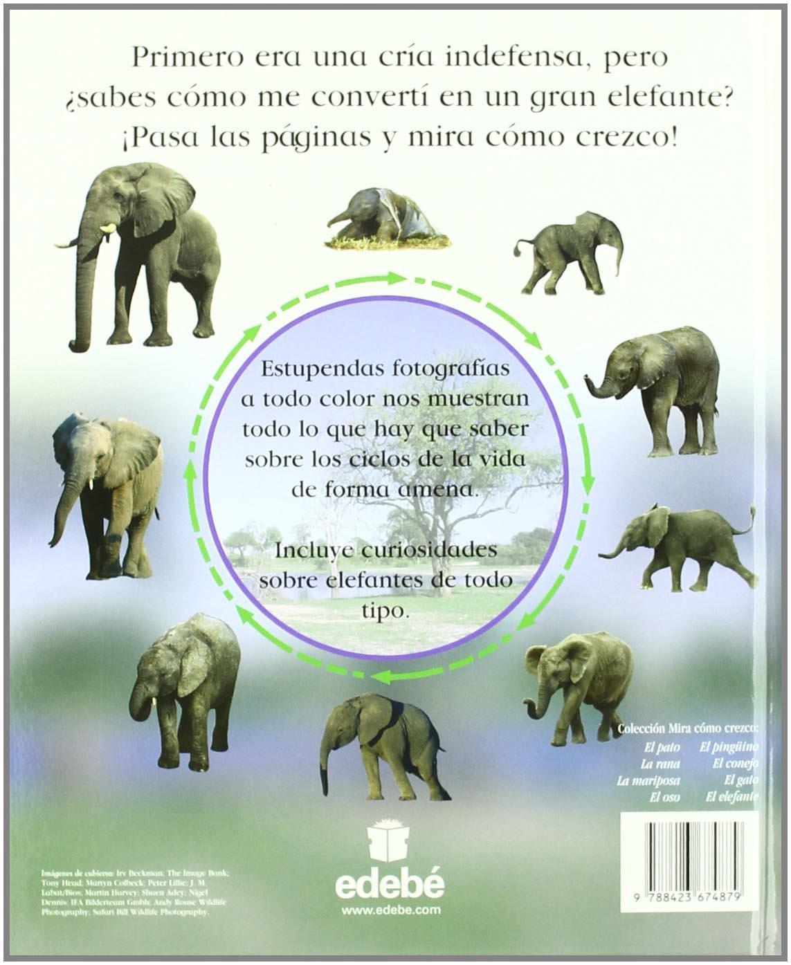 El elefante (MIRA CÓMO CREZCO): Amazon.es: Dorling Kindersley ...