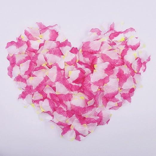 6 opinioni per JZK® 1000 x Seta petali di rosa finti fucsia bianchi coriandoli biodegradabili