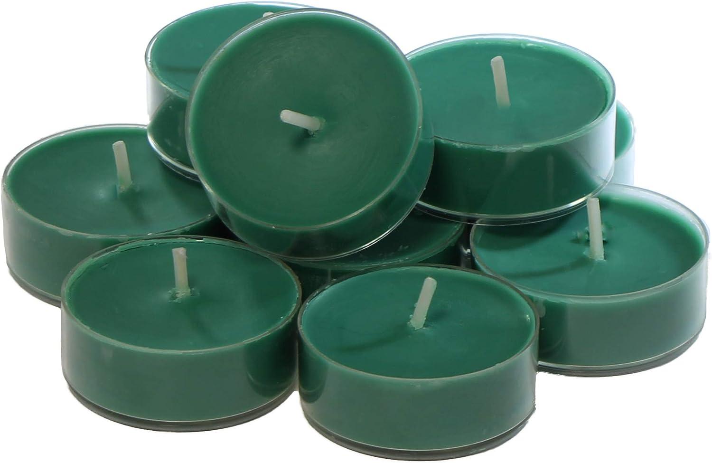 CandleNScent Green Scented Holiday Candles Tea Light Variation - Fresh Balsam Pine Fragrance - Pack of 12