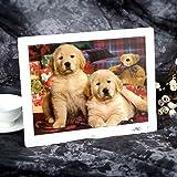 Andoer® 15 '' HD TFT-LCD 1024 * 768 Digital Photo Marco Reloj Despertador Reproductor de MP3 MP4 y Películas con Escritorio Remoto