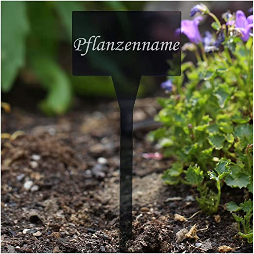 Acrílico cristal – Etiquetas para plantas (rectangular gris ...