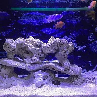 Funnyrunstore Acuario LED Luz 30W Acuario interior Luz LED Iluminación de agua salada con control táctil para el acuario de arrecife de coral (negro): ...