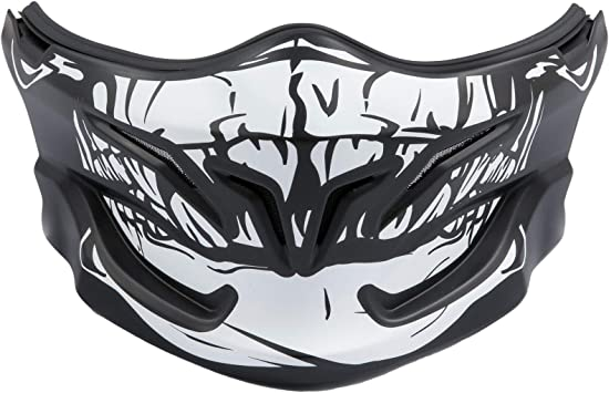 Scorpion Exo Combat Combat Evo Mask Matte Look Skull Design Skull Auto