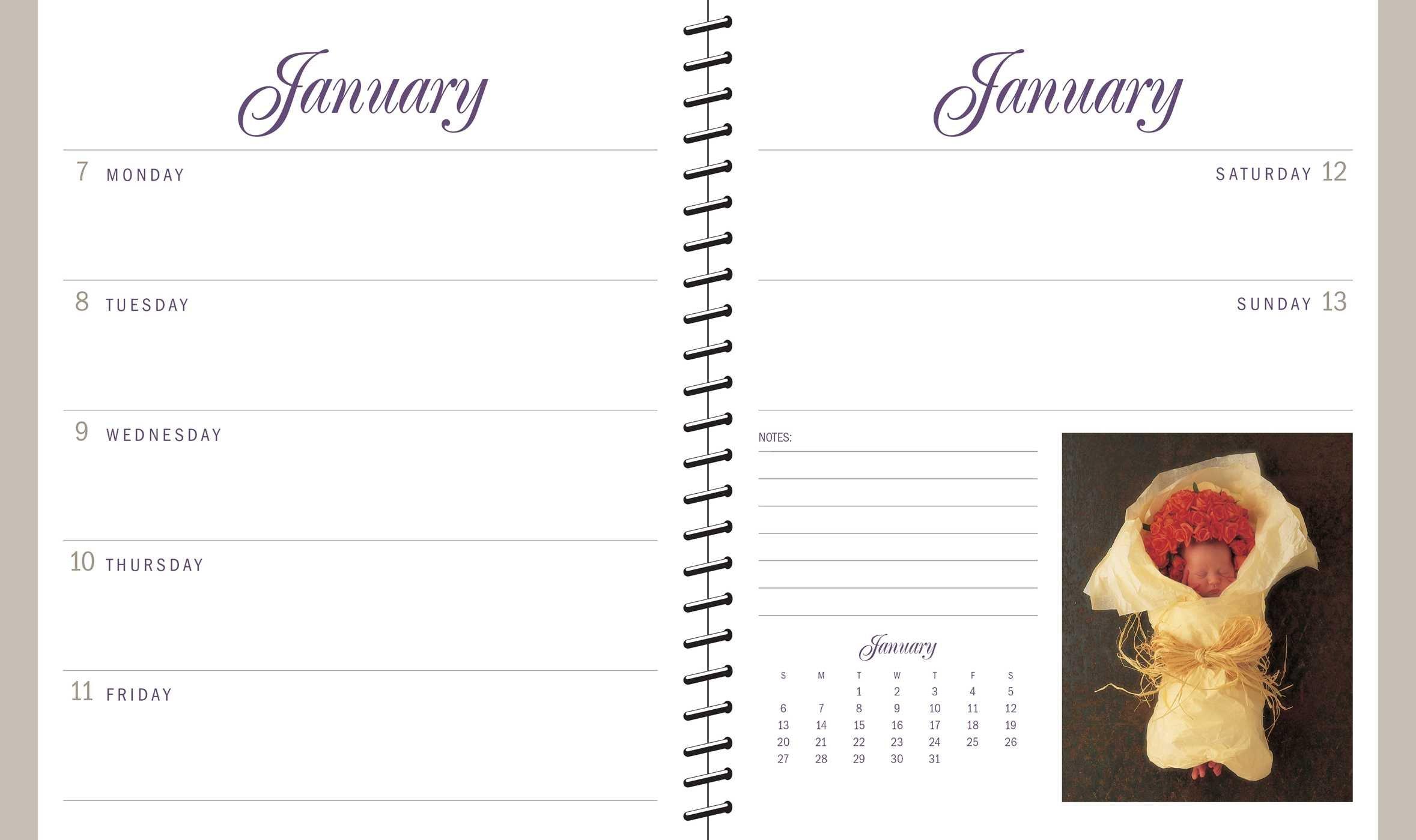 Anne Geddes 2019 Diary: Amazon.es: Anne Geddes: Libros en ...
