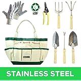 Lot de 9 outils de jardin inoxydables (griffe,secateur,transplantoir, truelle,gants,fil de jardin) avec sac de transport fourre-tout