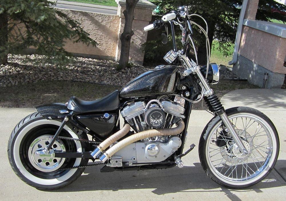 DK Custom Products 12 Inch BEEFY Struts Sportsters ~ Dynas  HardTail  Kit for Harley-Davidson DK-12-STR