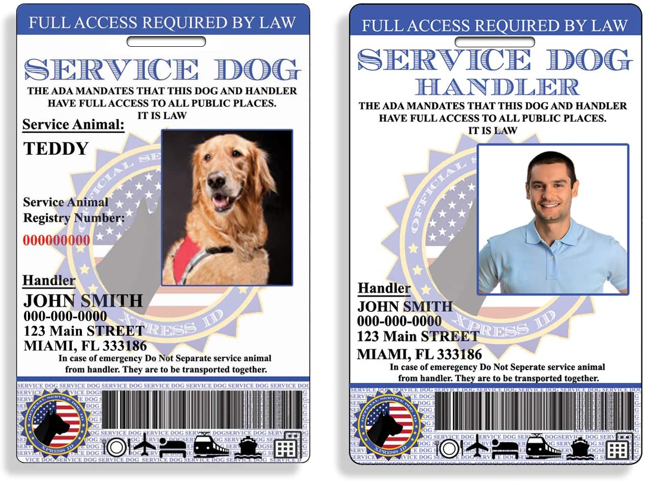 Amazon Com Xpressid Custom Holographic Service Dog Id And Handler Id Includes Registration To National Dog Registry Office Products