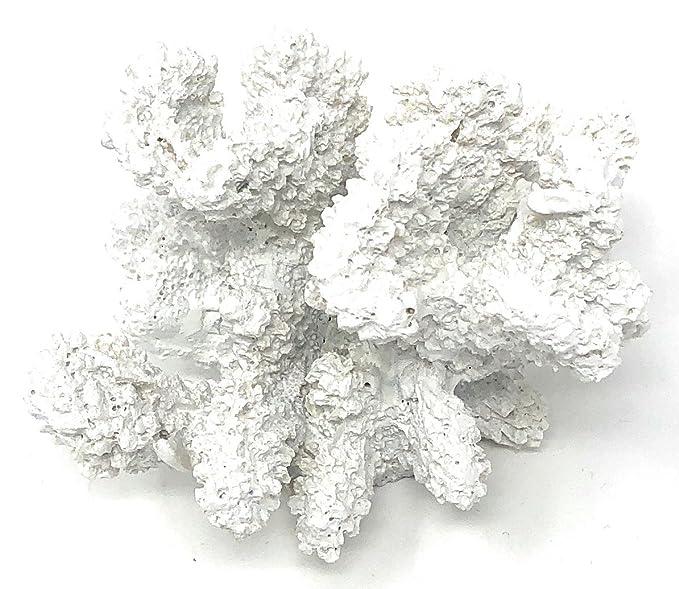 Weiße Deko KORALLE maritim Polyresin 7 x 8 cm