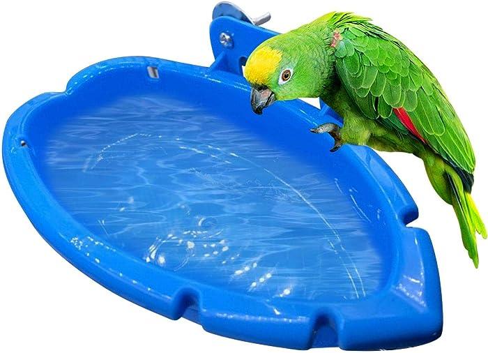 The Best Parakeet Food Net