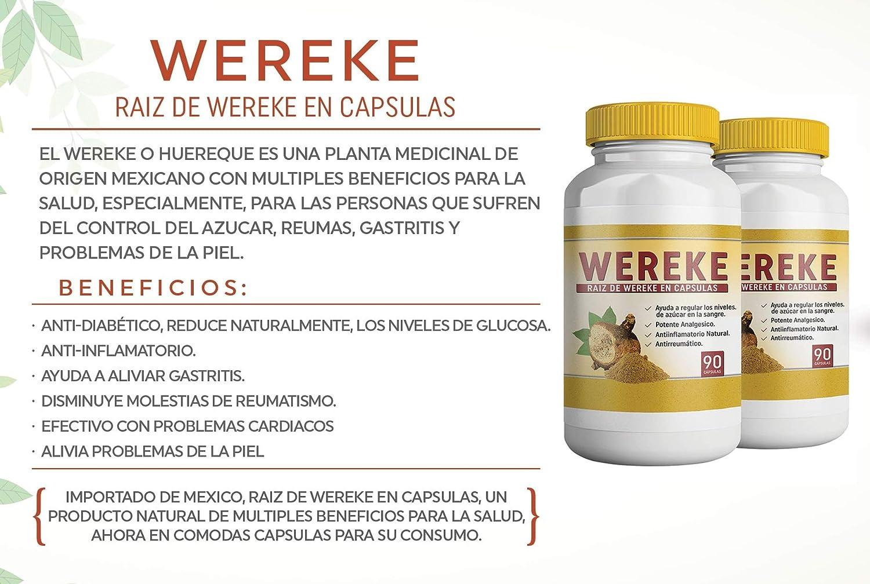 Amazon.com: Wereke Raiz de Wereke en Capsulas. Set de 2 frascos. para Control del Azucar, Reumas, Gastritis, Anti inflamatorio Natural.