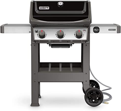 Weber 49010001 Natural Gas Grill - Alternative Solution