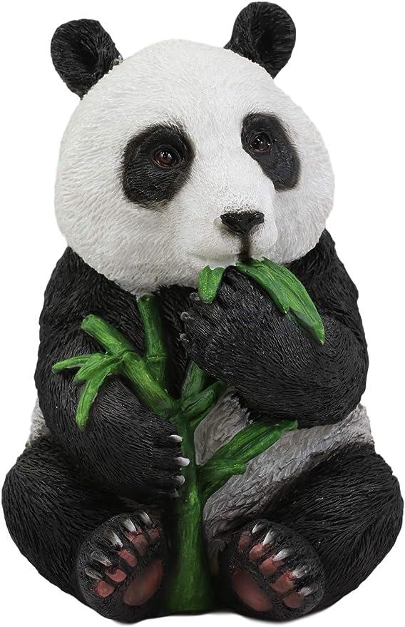 Amazon Com Ebros Realistic Lifelike Adorable China Giant Panda Bear Cub Baby Eating Bamboo Statue 6 5 H With Glass Eyes Hand Painted Eastern Mountain Pandas Bears Decor Figurine Endangered Animal Species Home