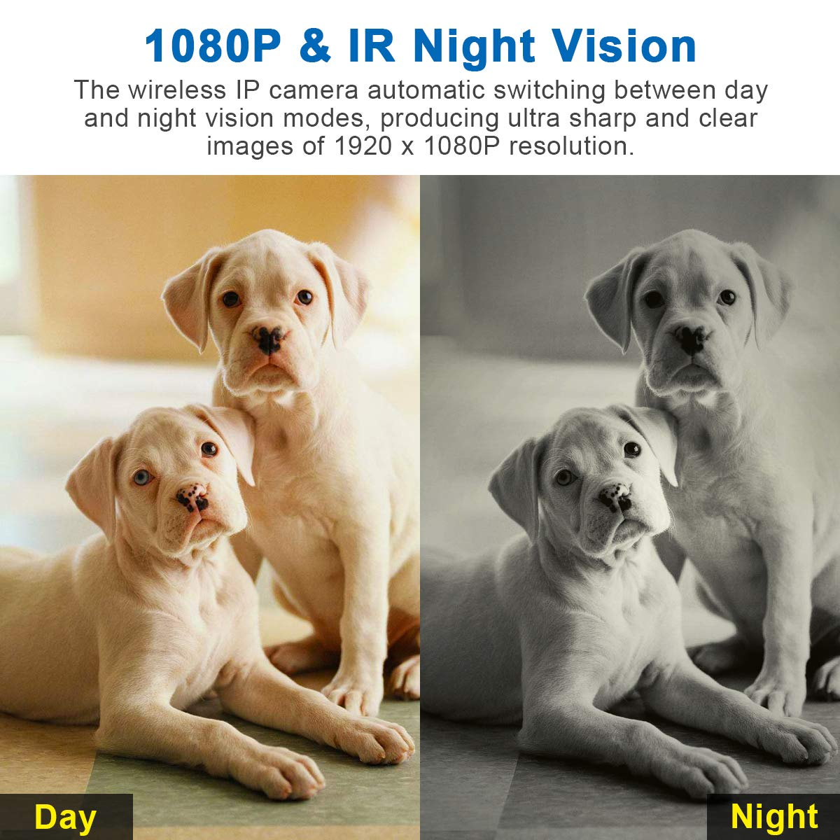 VIDEN WiFi IP Camera 1080P, Security Camera Pet Dog Elder Baby Camera Monitor, with Night Vision Motion Detection Two-Way Audio, Works with Android iOS New 2019
