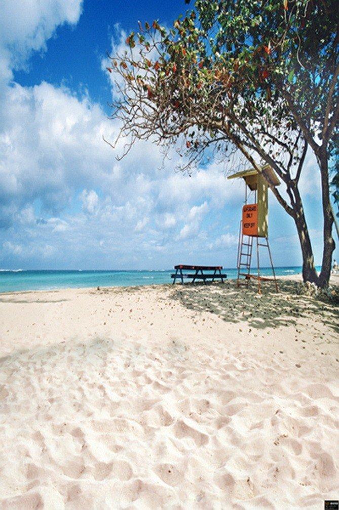A MonamourホワイトSand Beach Seaside Blue Cloudy Sky Trees Holiday画像背景Studioプロップビニール壁画   B01J86IZDK