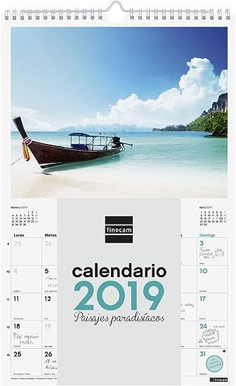 Finocam 780553119 - Calendario de pared 2019: Amazon.es: Oficina y papelería