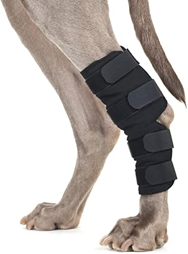 Back-on-Track-Therapeutic-Dog-Rear-Leg/Hock-Brace-(Pair)-Large-8.75-Inch-Length