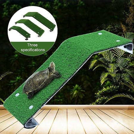 Faviye - Escalera de Tortuga para el Sol, de plástico, para Acuario, Medium: Amazon.es: Hogar