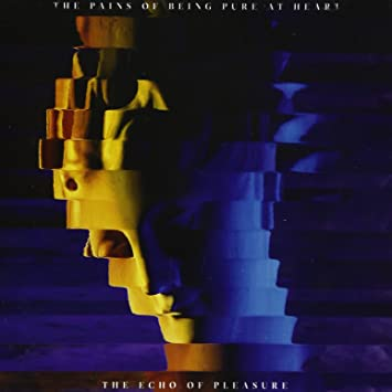 amazon the echo of pleasure the pains of being pure at heart