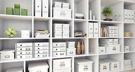 Leitz 60460001 Click & Store - Caja de almacenamiento para carpetas colgantes, color blanco: Amazon.es: Oficina y papelería