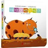 童立方·寶寶的雙語互動迷藏書會變形的MOMO:誰住在地下呢?
