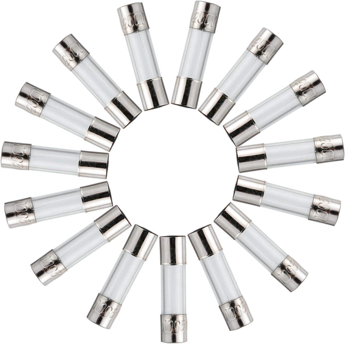 BOJACK T10A250V 6x30 mm 10 A 250 V Langsam schmelzen Sicherungen 10 Ampere 250 Volt 0,24 x 1,18 Zoll Glasrohr Zeitverz/ögerungs Sicherungen Packung mit 20 St/ück