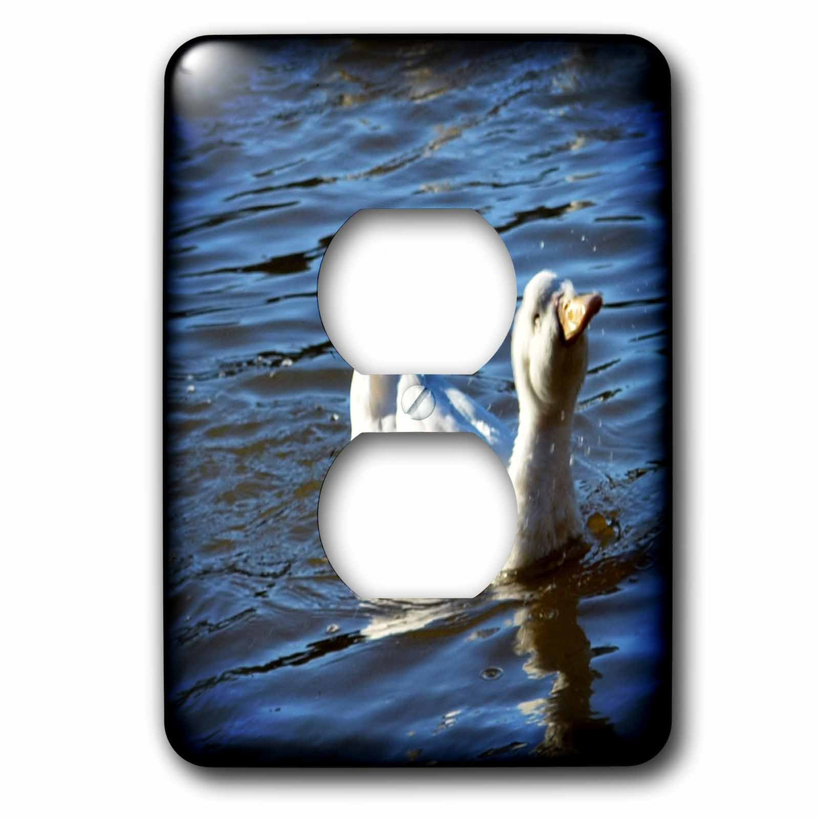 3dRose WhiteOaks Photography and Artwork - Ducks - Puffy Face Duck is a photo of a duck making a puffy looking face - Light Switch Covers - 2 plug outlet cover (lsp_265326_6)