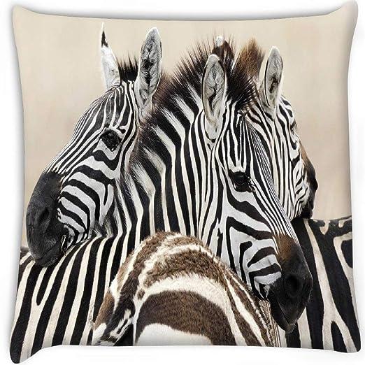 Red Zebra Funda de cojín con Estampado de Cebra roja y ...