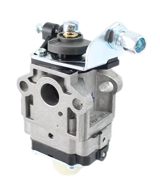 Polti filtro blu serbatoio Lecoaspira Lecologico AS808 AS810 FAV20 FAV30 FAV50