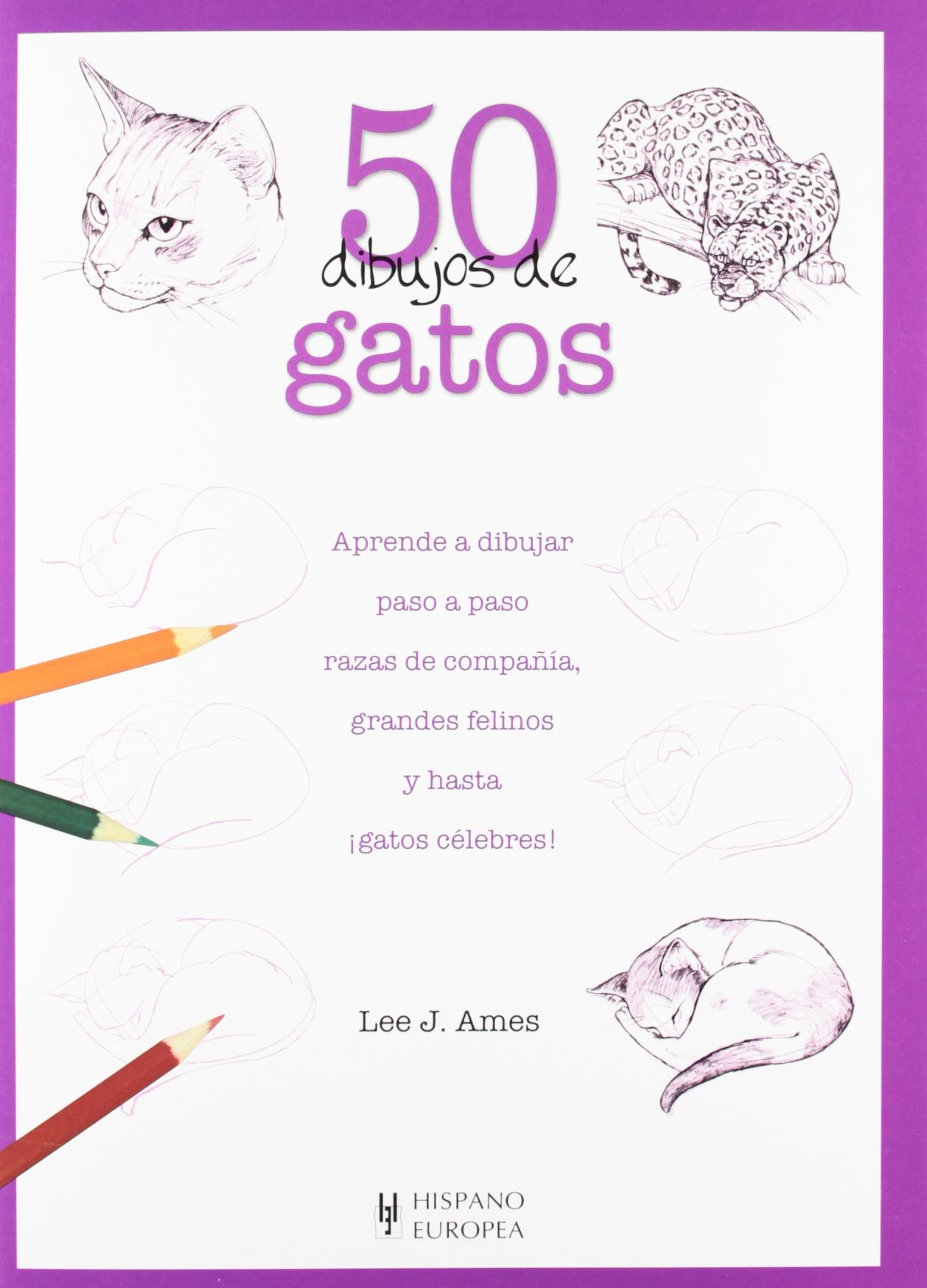 50 dibujos de gatos (Spanish Edition) (Spanish) Paperback – October 1, 2009