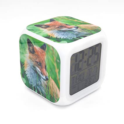 Amazon.com: EGS New Red Fox Animal Digital Alarm Clock Desk ...