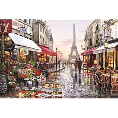 1000 Pieces Jigsaw Puzzles for Adults and Teens-Beautiful Scenery Puzzle-Brain Challenge Puzzle for Kids-Unique Home Decorations and Gifts-Paris Flower Street: Toys & Games