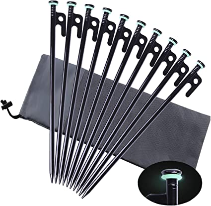 Heavy Duty Camping Tent Pegs Nails Stake Storage Case Bag for 20pcs Stakes