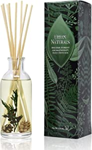 Urban Naturals Balsam Forest Reed Diffuser Oil Set with Real Juniper and Pine Cones – Fragrance Notes of Fir, Evergreen, Pine, Woodsy Cedar and Sandalwood – Vegan 3.75 Ounces – Made in The USA