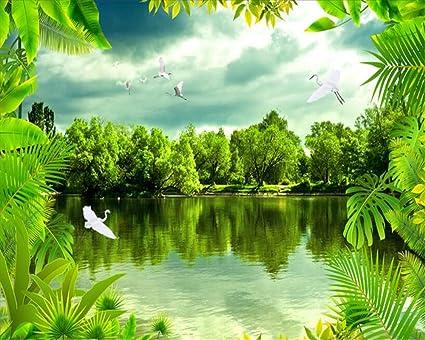 Carta Da Parati Foresta Tropicale : Lqwx carta da parati avanzata della foresta pluviale tropicale sogno