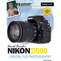 David Busch's Nikon D500 Guide to Digital SLR Photography (The David Busch Camera Guide Series) book cover